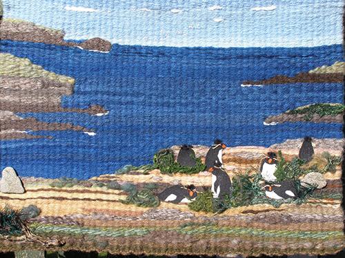 Falkland Island Rockhopper Penguin Art