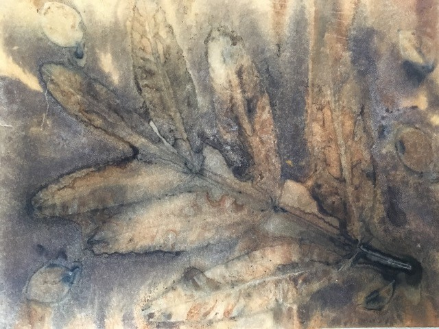 Yvonne Appleby's Eco print on watercolour paper