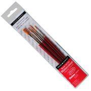 Dalon Brush Starter set