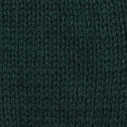 Ashford Tekapo DK wool yarn - Pine