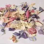 Petals & Leaves