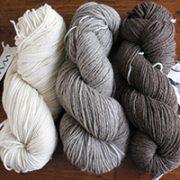 DK Wool Yarns Natural