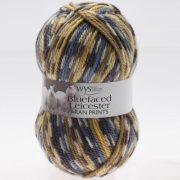 WYS Bluefaced Leicester Printed  Aran Yarn Blue Tit