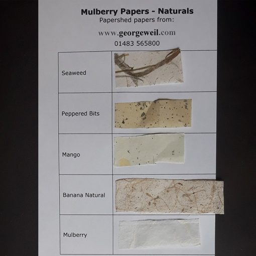 Sample card for Mulberry Tissues