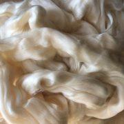 Milk Protein (Casein) Sliver